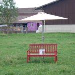 Jedes Jahr im Mai lädt die Familie von Ballmoos auf der power-farm zum grossen Hoffest ein.